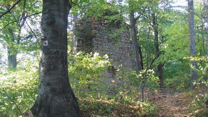 Zřícenina hradu Holštejn