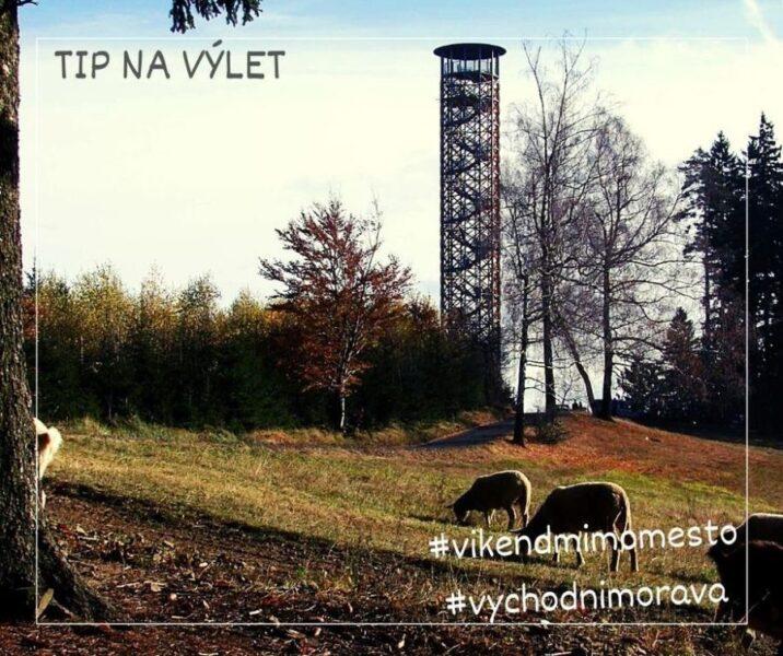 Prlovský les a rozhledna Vartovna