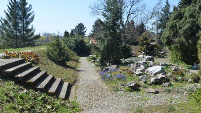 Schodiště, květiny, park