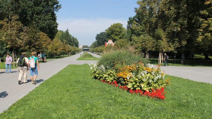 Park, botanická zahrada
