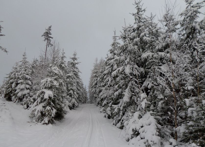 Dědkovská hora, cesta na vrchol