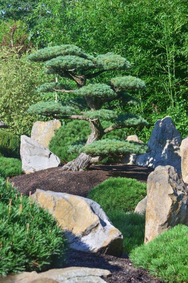 ZOO Zlín a japonské ladění v zahradě Mu-Shin