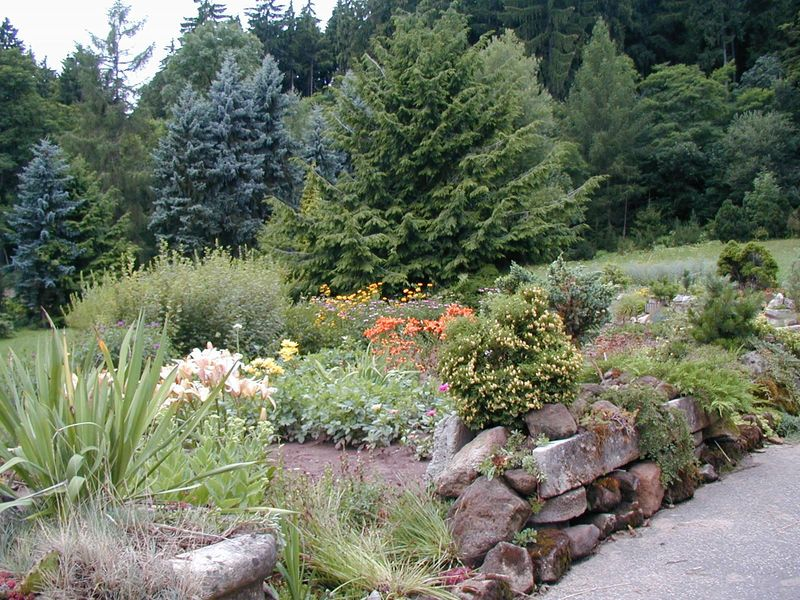 Zahradnictví SAK a arboretum Borotín
