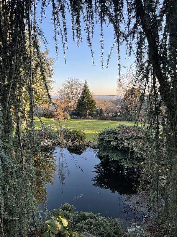 botanická zahrada Dubiny-krajina