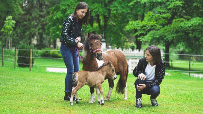 Koně s dětmi