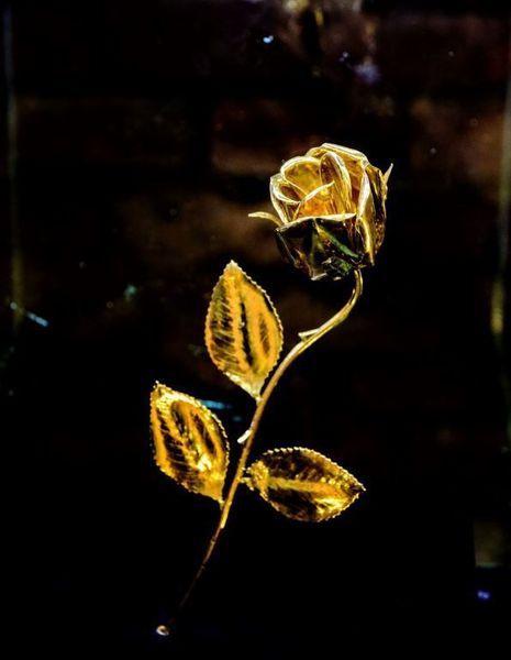 Zlatá růže, Velehrad