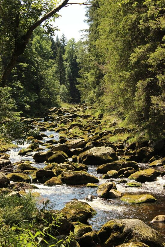 Naučná stezka Povydří-řeka Vydra