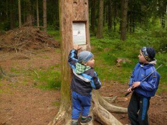 Pohádkový les u Slavonic je plný pohádek a úkolů pro děti. Zdroj foto: Turistické informační centrum Slavonice