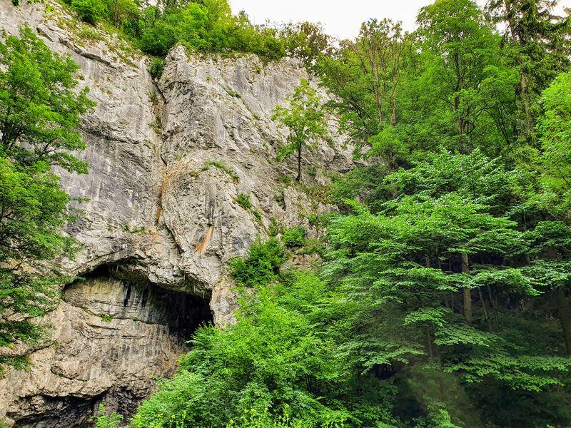 Jeskyně Býčí skála v Moravském krasu. Foto: Jiří Novotný