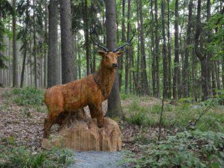 Ždírecká zoo na Plzeňsku je park s krásnými dřevěnými a kovovými sochami zvířat. Zdroj foto: Ždírecká zoo