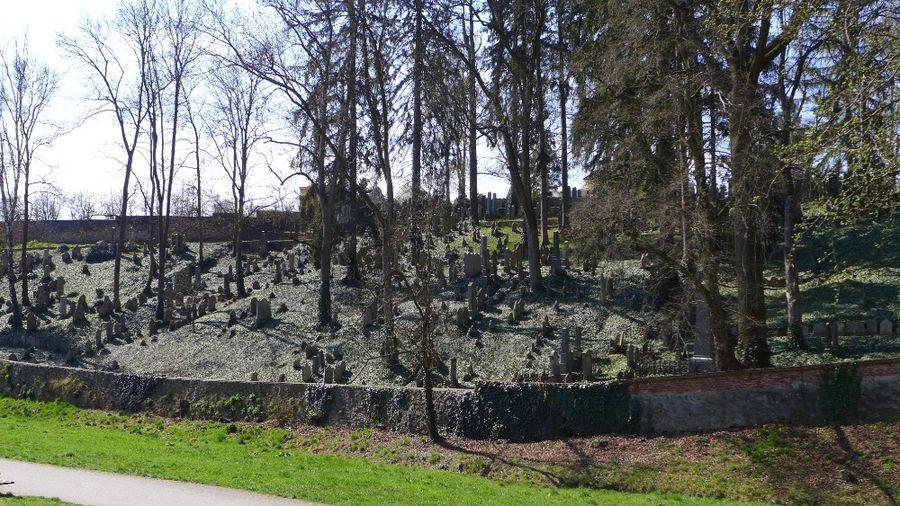 Židovský hřbitov Třebíč. Foto: Eva Koutná