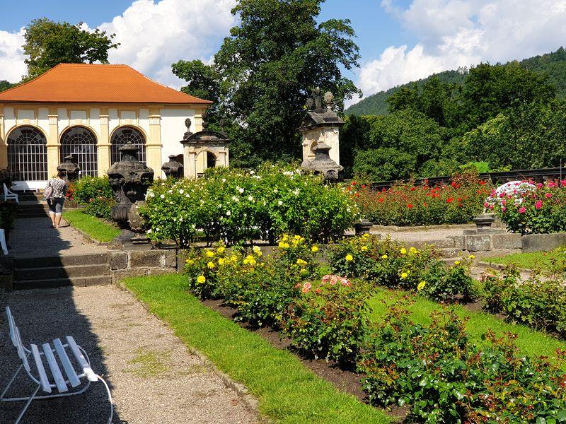 Růžová zahrada na děčínském zámku. Foto: Anna Petruželková